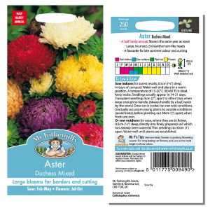 Mr. Fothergill's Seeds - Aster Duchess Mixed