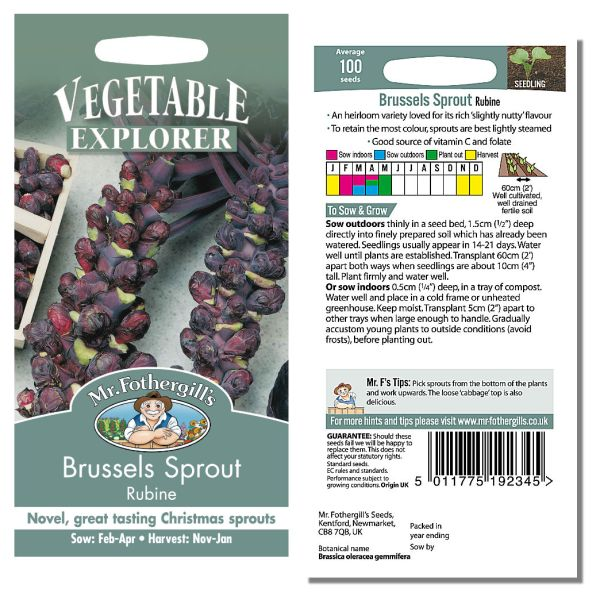 Mr. Fothergill's Seeds - Brussels Sprout Rubine