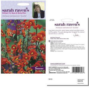 Sarah Raven's Alonsoa warscewiczii 'Scarlet' Seeds by Johnsons