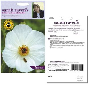 Sarah Raven's Argemone platycerus Prickly Poppy Seeds by Johnsons