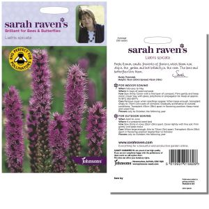 Sarah Raven's Liatris spicata Seeds by Johnsons