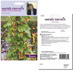Sarah Raven's Mina lobata Seeds by Johnsons