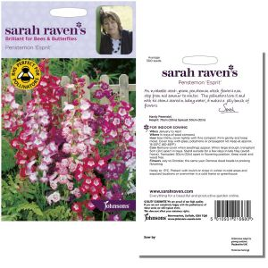Sarah Raven's Penstemon 'Esprit' Seeds by Johnsons