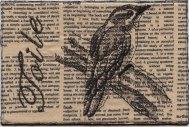 Franki Kohler, Toile Downy Woodpecker