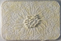 Franki Kohler, White Sunflower