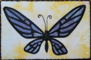 Sue Andrus, R22, Butterfly 3