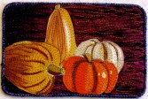 Sara Kelly, pumpkins & gourds