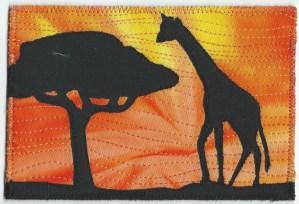 Colette Herrin, Giraffes