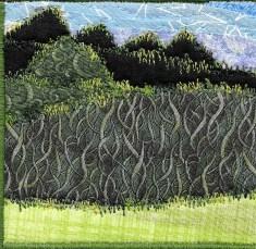 Alexis Gardner, R27, Simplified Landscape