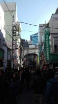 La folla ad Akihabara