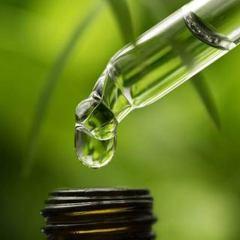 Više od 40 biljnih spojeva zaustavlja širenje raka