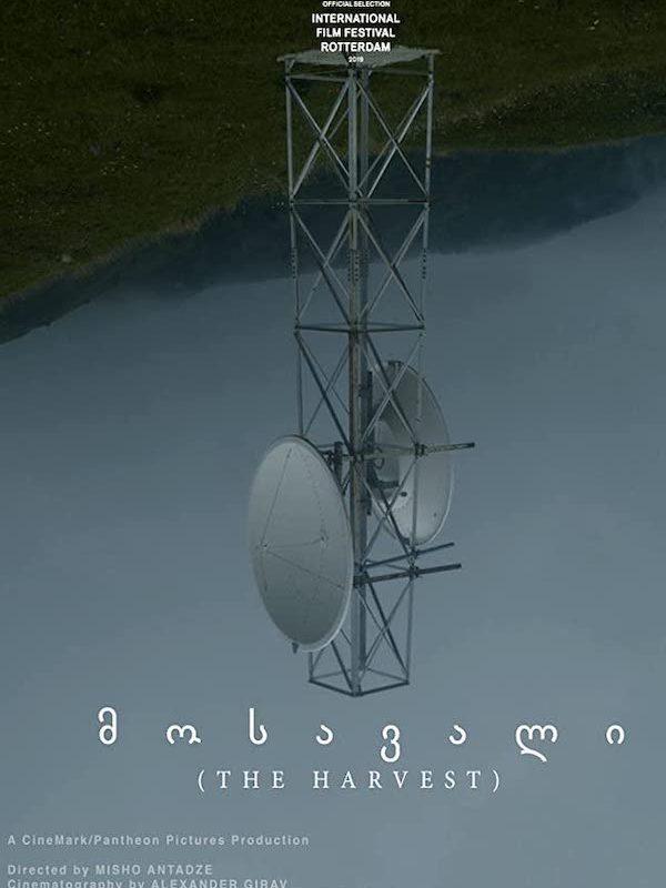 mosavali-harvest-misho-antadze-audio-post-sound-design-foley-postred