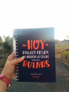 Mi feliz agenda de Mr Wonderful :) traída de España