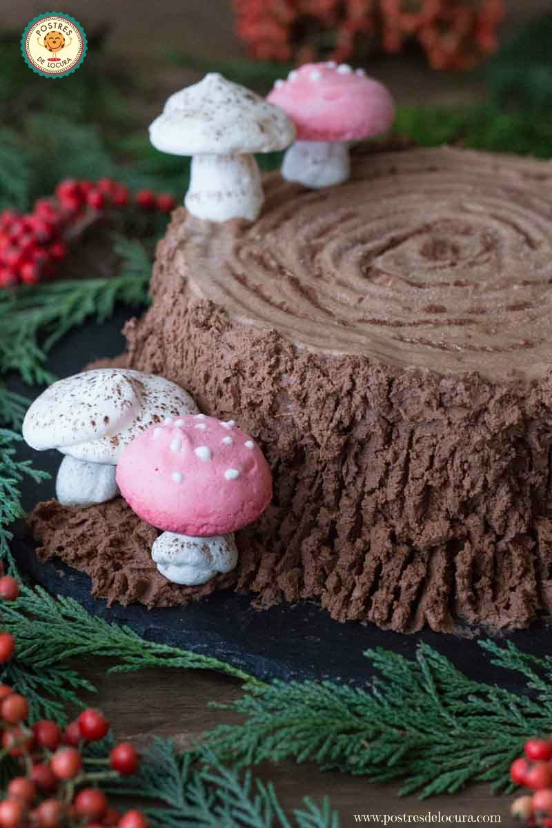tronco-helado-de-chocolate-con-setas-de-merengue