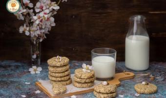 galletas veganas de avena, almendra y chía sin gluten