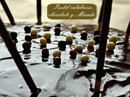 Postres con Verduras - Pastel de Calabaza, Chocolate y Palitos (Copiar)