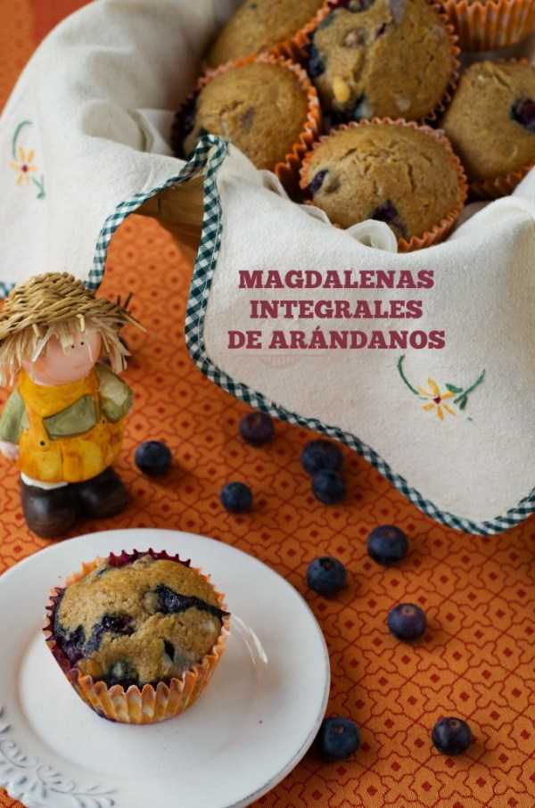 Magdalenas Integrales de Arándanos - Texto 01