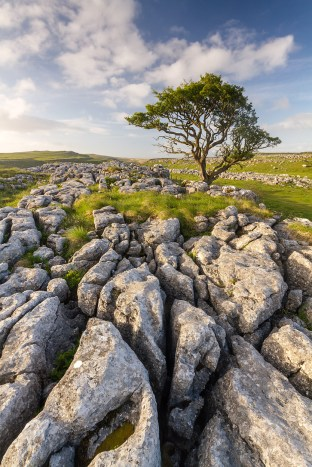 Malham-Scaleber-Jun-2015-0110-noQR