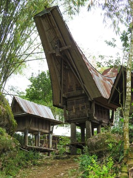 Hike in the countryside to see traditional Torajan rice barns