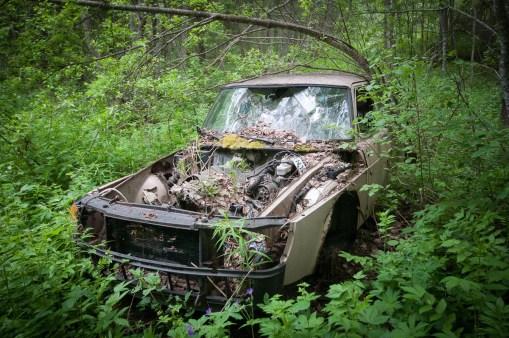 Längs en sedan gammal övervuxen skogsväg står denna skönhet parkerad...