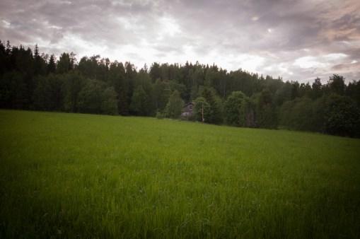 Vid skogskanten ligger ett litet hus...