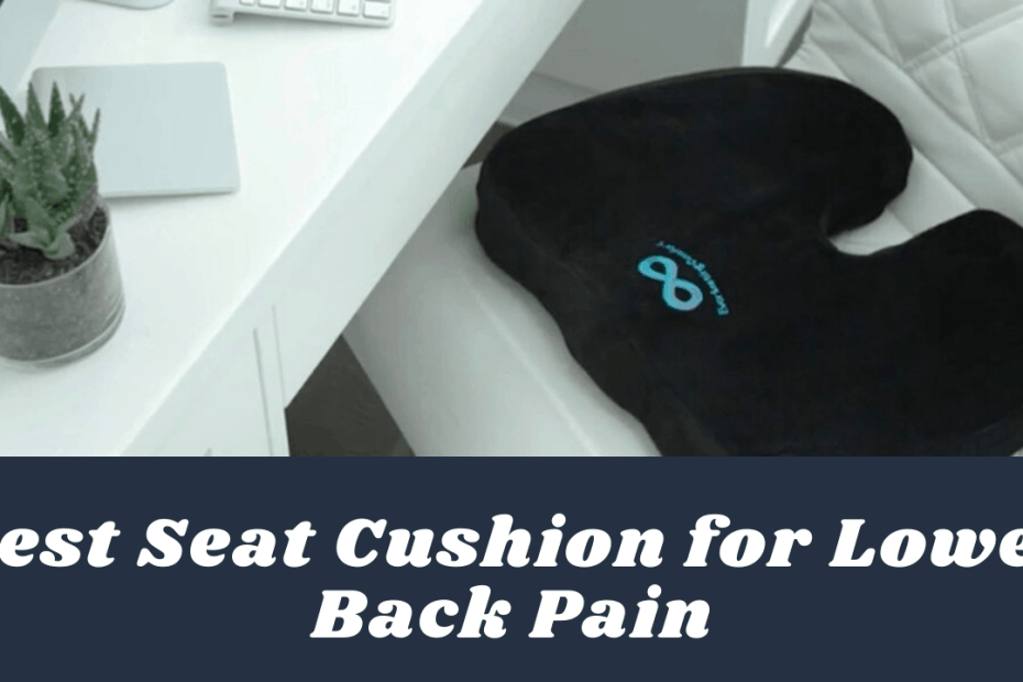 Best Seat Cushion for Lower Back Pain