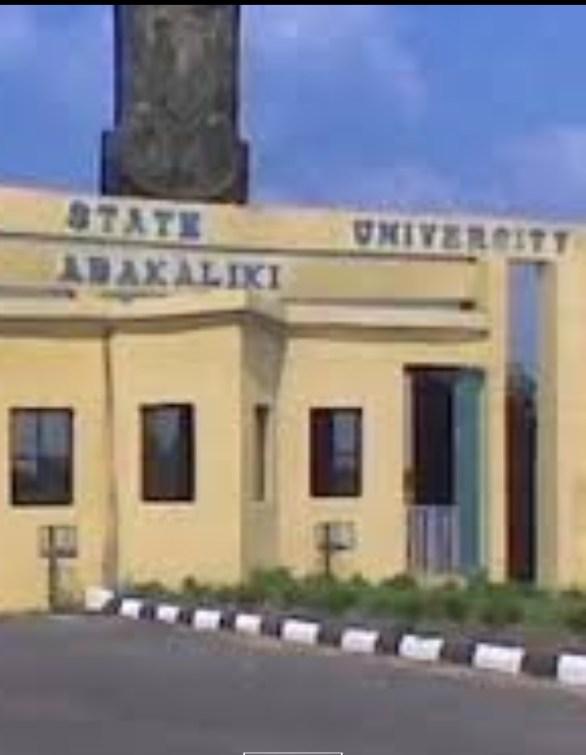 ebonyi state university