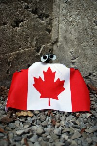 Celebrating Canada Day - photo courtesy of meddygarnet