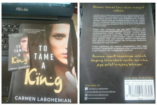 novel to tame a king