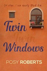Twin Windows2
