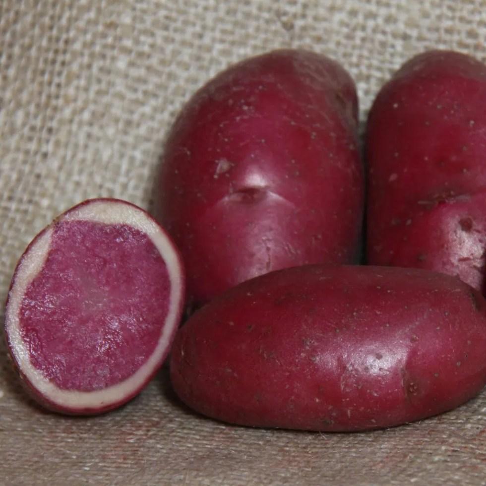 Best Potato To Grow For Roast Potatoes