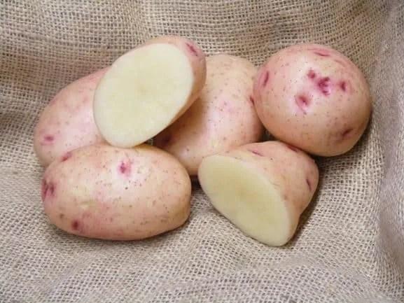 The Best Potato To Grow For Roast Potatoes