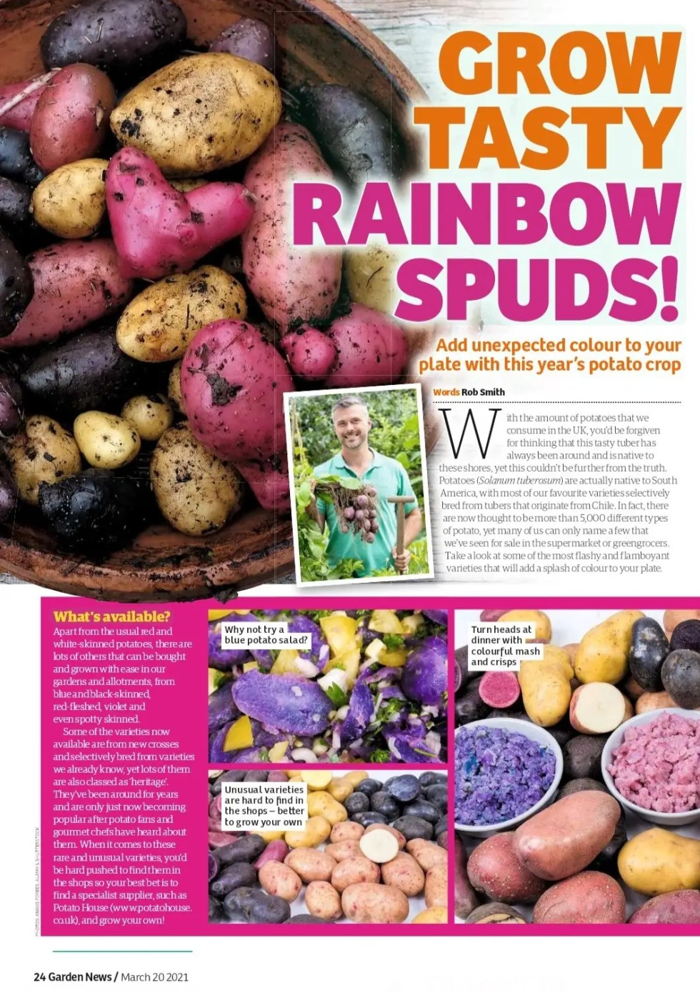 Grow Tasty Rainbow Spuds