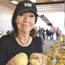 The Ontario Potato Board's Dr. Eugenia Banks shows two types of potatoes that were grown side-by-side in a local test field. About 85 varities of potatoes were on display at this year's Ontario Potato Field Day held at HJV Equipment near Alliston. Aug. 19, 2016.