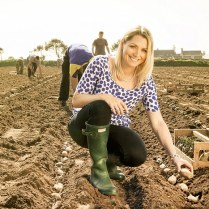 fml-jersey royal potatoes harriet arkell john godwin (harriet planting a potatoe with other planters in the background)