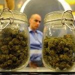 Consejos para conservar la marihuana durante mucho mas tiempo