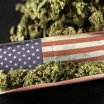Dos de cada 3 estadounidenses apoyan legalizar cannabis