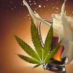 ¿Qué es más dañino, el alcohol o la marihuana? La ciencia responde
