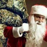Detienen en California a Hombre Que Traficaba Marihuana Envuelta Como Regalos de Navidad
