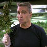 Henry Rollins será orador principal en La Conferencia Internacional de Negocios sobre Cannabis