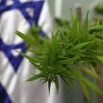 Universidad en Israel inaugura el primer curso de Cannabis Médico