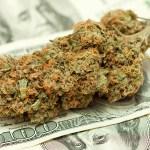 ¿Cuál es el precio de un gramo de marihuana en diferentes partes del mundo?