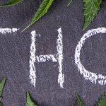 EFECTOS SECUNDARIOS DEL THC