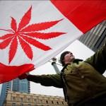 Canadá espera legalizar plenamente el cannabis para el 1 de julio de 2018