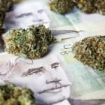 Canadá ganará $ 675 millones de dólares anuales de la marihuana legal