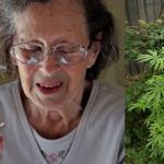 El cannabis beneficia la salud de los adultos mayores