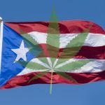 Abren más dispensarios de cannabis medicinal en Puerto Rico