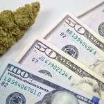 Emiten permisos de impuestos para distribuidores de marihuana recreativa en California