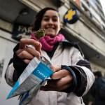 Se triplican los consumidores de marihuana registrados en Ururguay