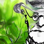 Cómo Sigmund Freud introdujo la cocaína en la medicina